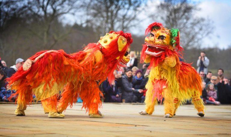 Professional Lion Dancers