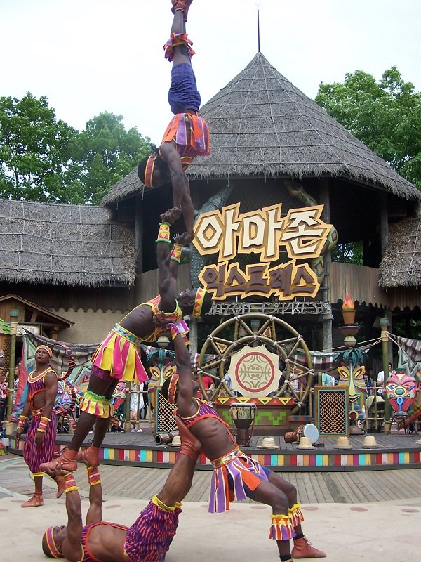 The African Acrobats